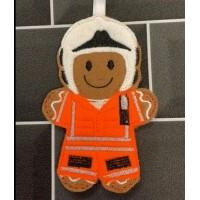 Ginger Air Ambulance Pilot