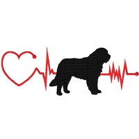 Heartbeat Dog – Saint Bernhard